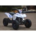MINI ATV ELETTRICO 1000W