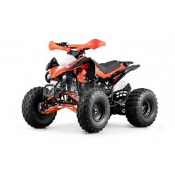 ATV SKYNER 125CC 4 TEMPI RUOTE 8 '