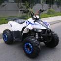 QUAD EXPLORER 110cc 4T CON RETROMARCIA