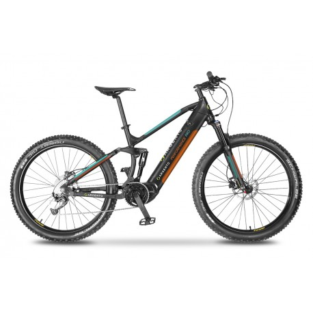 ARGENTO - E-BIKE PERFORMANCE PRO 2020